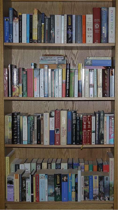 Bookcase Unread Books