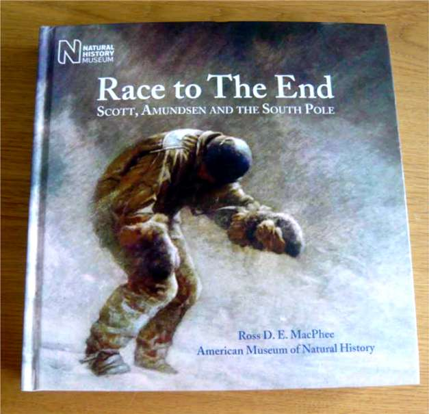 Race to The End cover