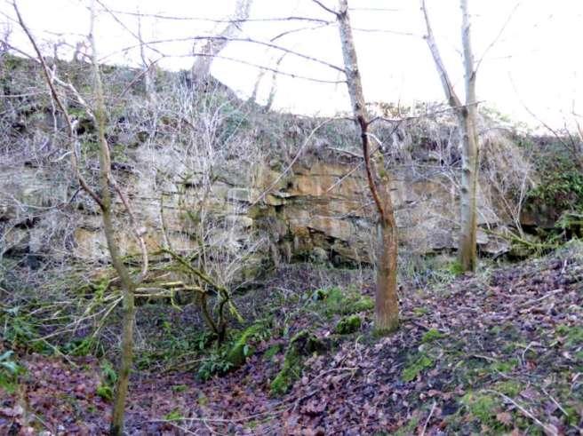 Quarry P1010407